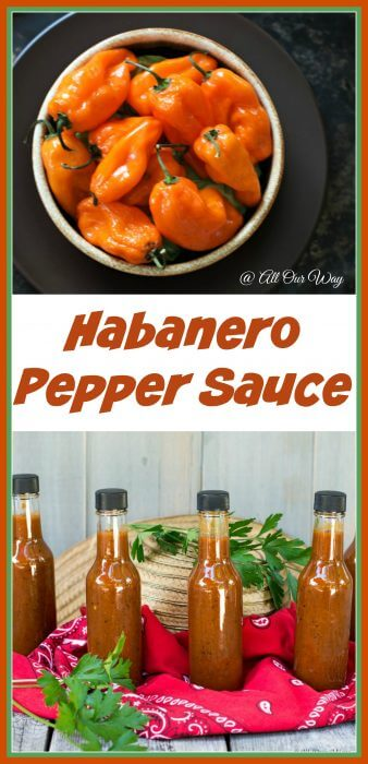 Collage of Light My Fire Habanero Pepper Sauce has fire with a touch of sweet @allourway.com