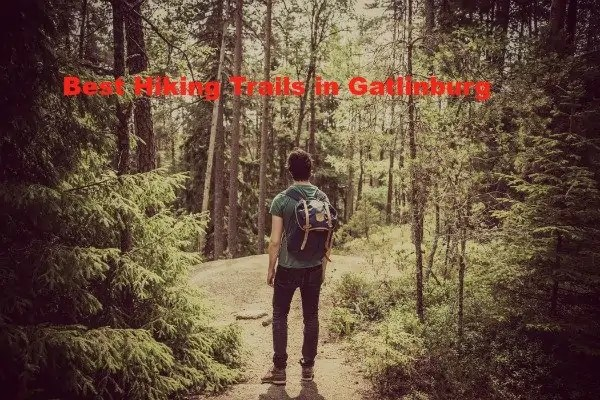 Best Hiking Trails in Gatlinburg