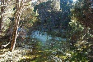 Mount Michael Blue Tier.020 11h08m06s2019 06 23