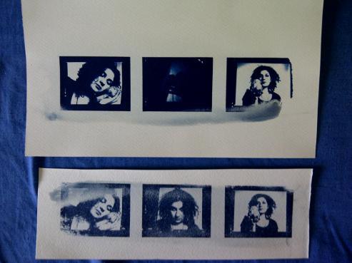 cyanotypes triptych