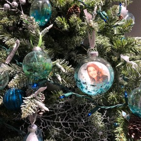 Allovus holiday traditions