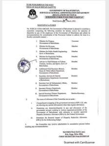 Notification   Constitution of Committee for holistic review for reduction of disparities in the pay of employees of Government of Balochistan   March 30, 2021 - allpaknotifications.com
