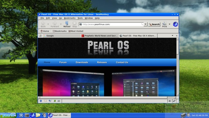 Pearl Linux OS 4.0 Review