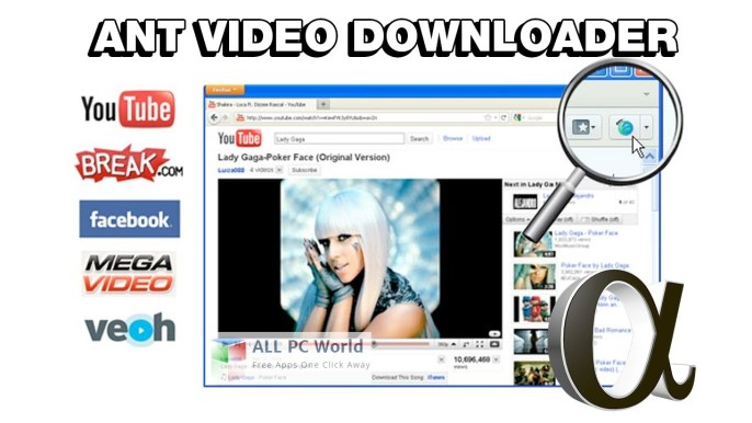 AntVideo Downloader Review
