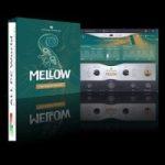 UJAM-Virtual-Bassist-MELLOW-Free-Download
