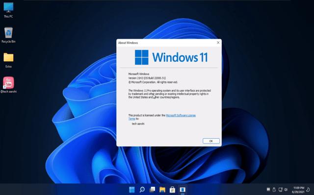 Windows 11 Professional Lite Edition Free Download