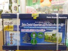テトラ クリスタルアクアリウムLEDライト&ヒーターセット520 スペシャルプライス!
