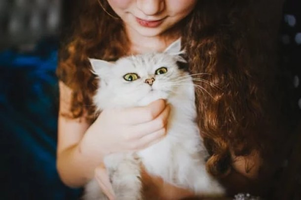 best pets for kids