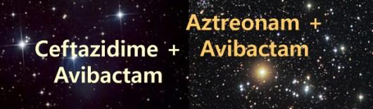 Avibactam - slider