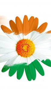 Free download of India Flag for Mobile Phone Wallpaper 15 of 17 - Tricolour Flower