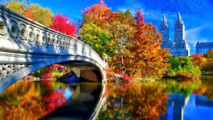 Autumn In New York Desktop Wallpaper