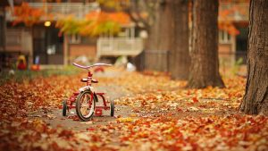 Free Autumn Wallpaper And Screensavers