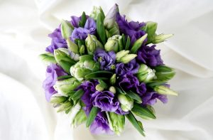 Lisianthus white and purple - flowers that look like roses