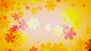 Big Floral Wallpaper Designs in HD 1080p Resolution