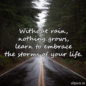 20 Most Favorite Saturday Thoughts and Motivational Images 08 - Without rain nothing grows