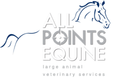 All Points Equine Animal Chiropractic