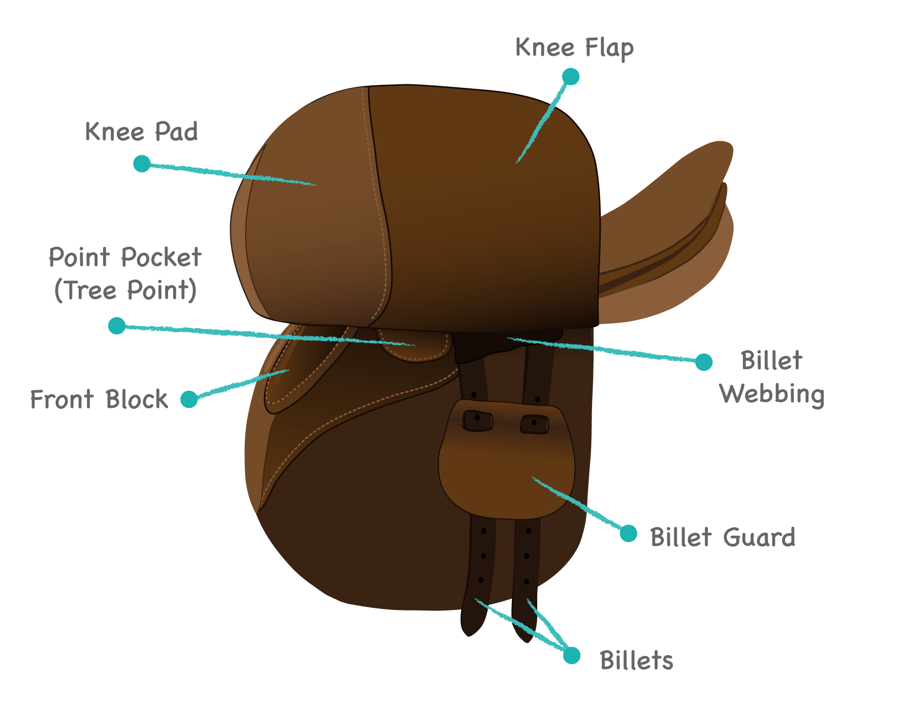 Identify Horse Saddle Types Play The Name The Saddle Parts