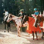 Horse Halloween Costume Ideas Allpony