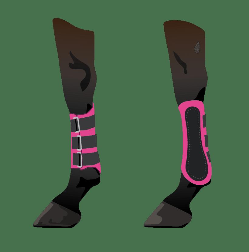 horse leg splint boots illustration