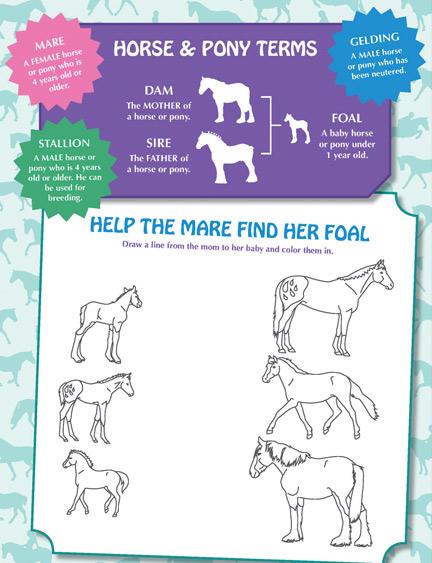 AllponyActivityBook_MareFoal