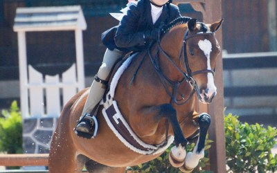 6 Things to Look for When Shopping for a Short Stirrup Pony