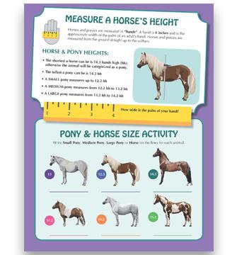 Measure_Square