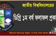National University Degree 1st Year Exam Result 2017