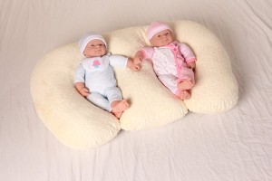 twin z pillow shark tank products