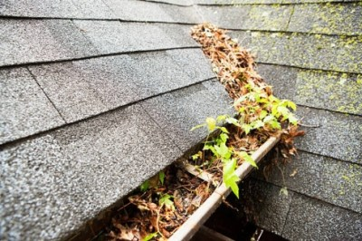 Gutter Cleaning Irving TX