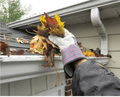 Gutter Cleaner