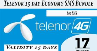15 Day Economy SMS Bundle