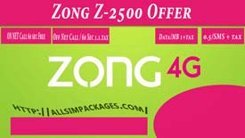 ZONG-Z-2500-Offer-one
