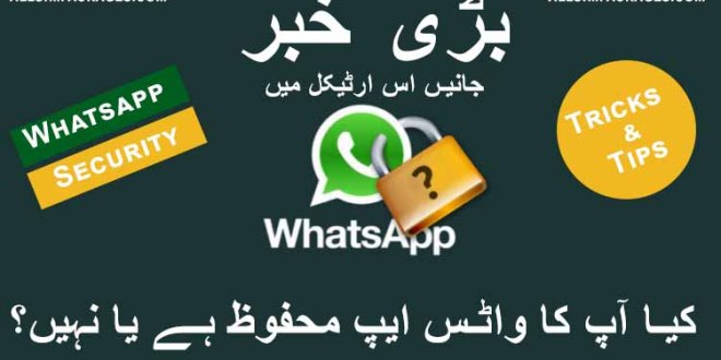 How to Make Sure Your WhatsApp is Still End-to-End Encrypted