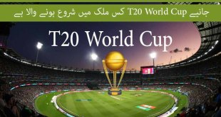 when will T20 world cup start
