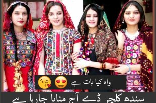 sindh culture day