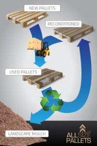 Life cycle of reconditioned and recycled pallets