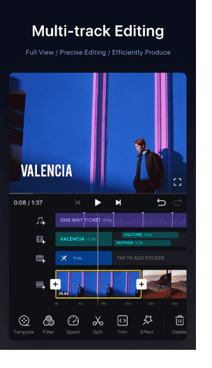 VN-Video Downloader-2021