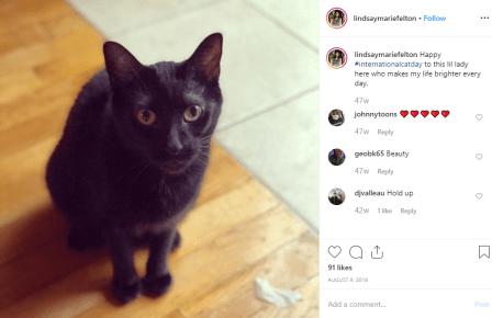 Lindsay Marie Felton's cat