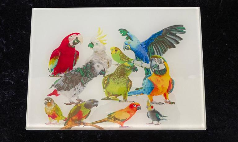 Multiple parrot chopping board