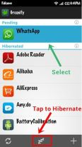 Greenify - Deactivate whatsapp and receive Whatsapp notification 2