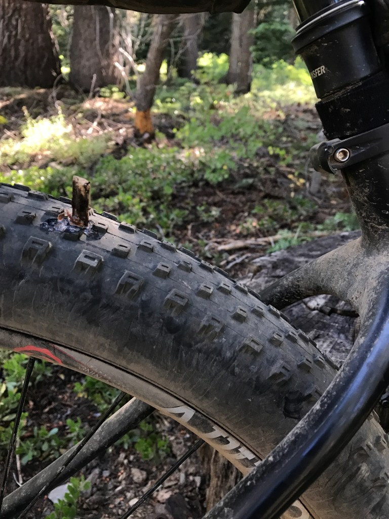 27.5 Plus tire with a stick stuck in it.
