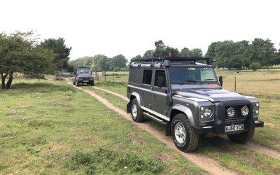 Kings Forest, Thetford, Norfolk – Alan King 17.6.2020