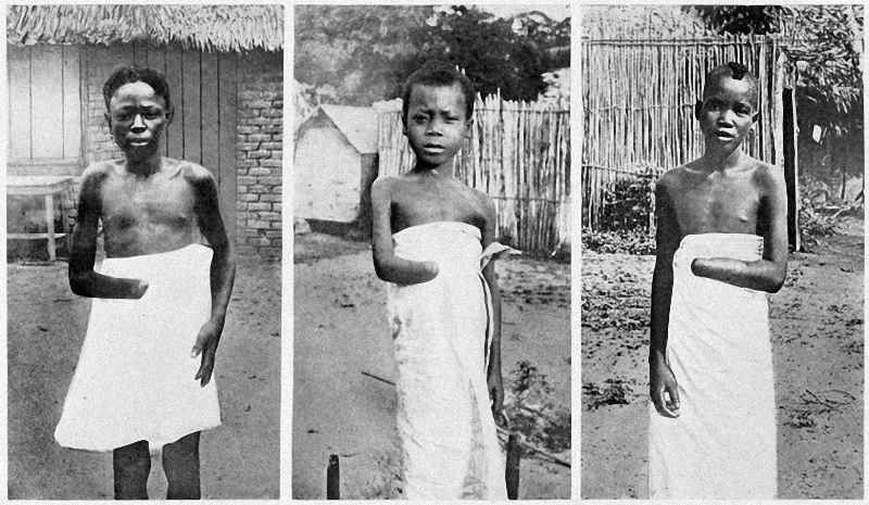 Image result for belgium atrocities in congo