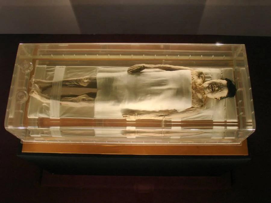 Xin Zhui Mummy Under Glass