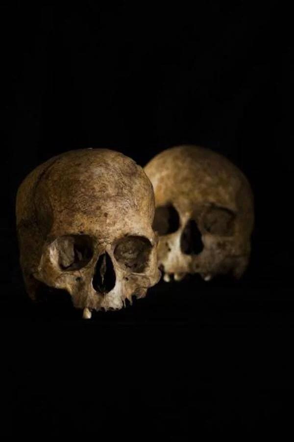 Cueva De La Dehesilla Skulls