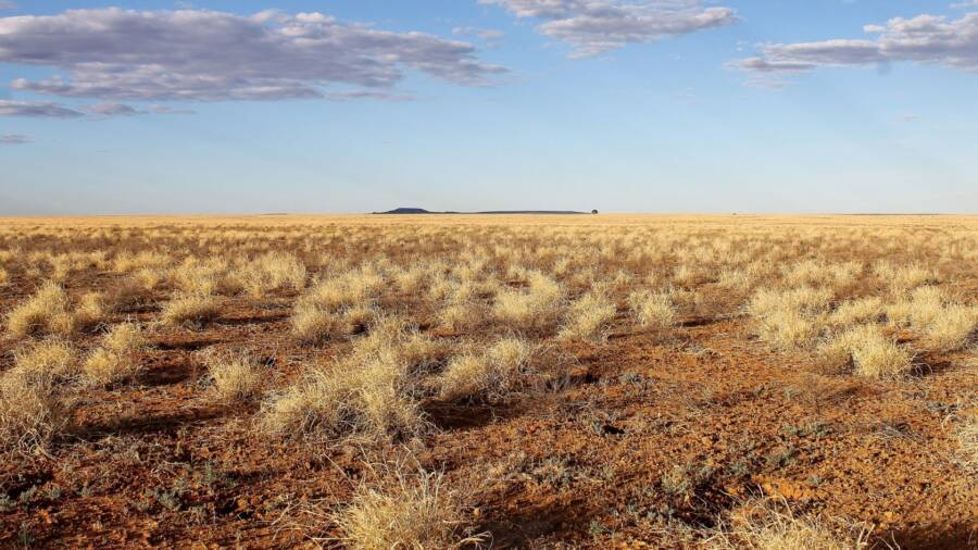 Australotitan Cooperensis Dig Site