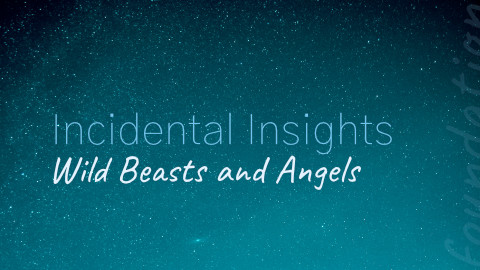 Incidental Insights: Wild Beasts and Angels