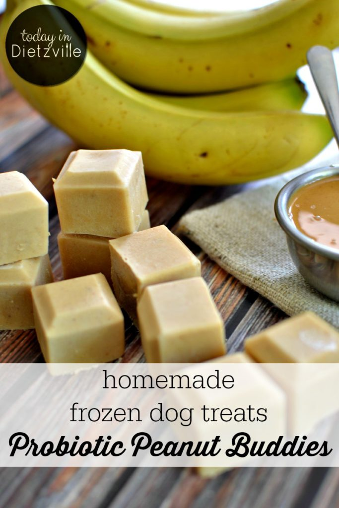 Probiotic Peanut Buddies | Here are some probiotic-rich homemade frozen dog treats to help cool off your furry friends! Made with only whole food ingredients, your puppies will be nourished while having their own sort of popsicle! I call these Probiotic Peanut Buddies, and you can whip them up in 5 minutes or less! | AllTheNourishingThings.com