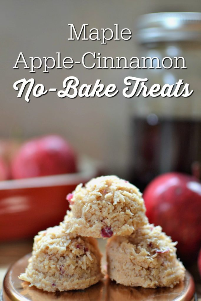 Maple Apple-Cinnamon No-Bake Treats | Changing leaves are beautiful, and I certainly love the cooler temperatures, but fall food? Man, oh man... Fall flavors in particular! Pumpkin, cinnamon, cloves, maple syrup, and of course, APPLES! Try these no-bake treats -- there's no gluten, grains, dairy, eggs, soy, nuts, tree nuts, or refined sugar! | AllTheNourishingThings.com