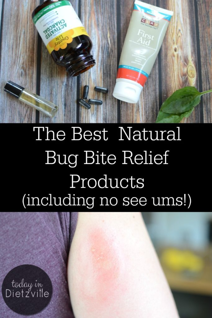 The Best Natural Bug Bite Relief Products | You can't wait for warm weather and sunshine... only to be carried off by the bugs. What to do? From bentonite clay to essential oils and more, these are the best natural bug bite relief products I've found! They even provide relief for no see um bites! | AllTheNourishingThings.com